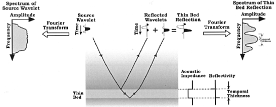 Figure 6 Source wavelet amplitude spectrum compared to the filtered spectrum resulting from interfering top and base reflections off a thin bed